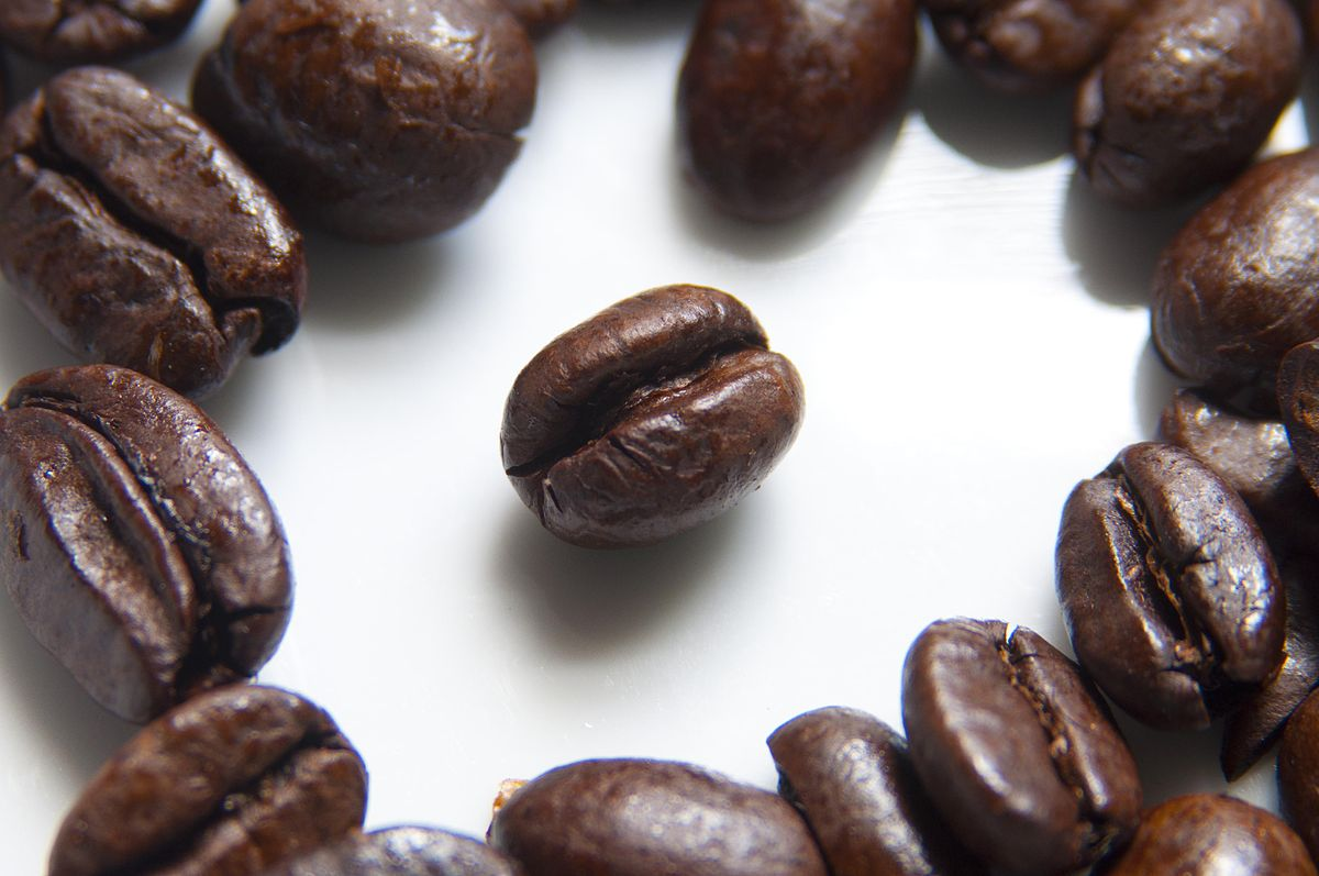 1200px-Coffee_Beans_Photographed_in_Macro